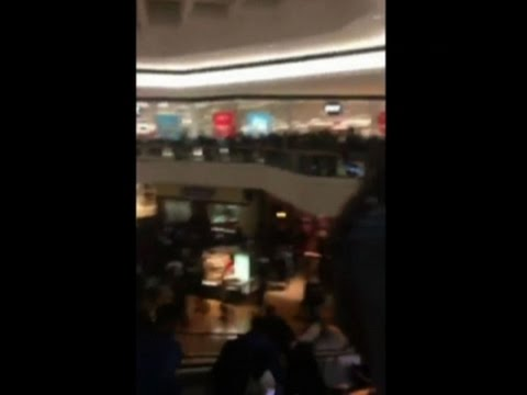 Raw: Brawl Breaks Out at Illinois Shopping Mall