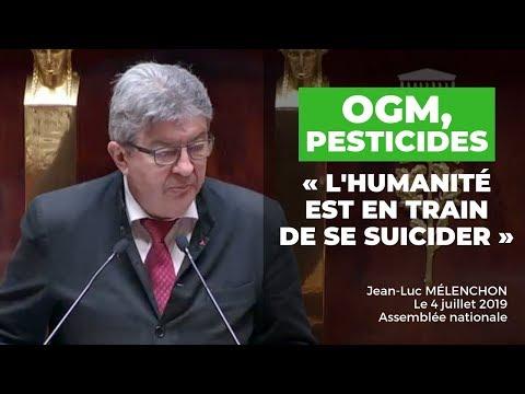 OGM, PESTICIDES : L'HUMANITÉ EST EN TRAIN DE SE SUICIDER