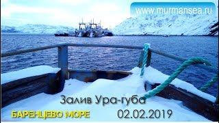 Затока Ура губа, Баренцове море 02 лютого 2019г Мурманські морські риболовлі