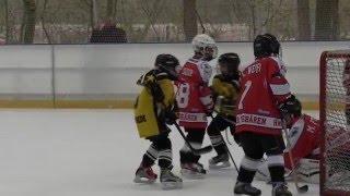SV Brackwede (Bielefeld) Eishockey  Kinder U-10 2016