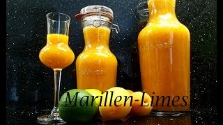 Thermomix®  TM31 - TM5 - TM6   Marillen - Limes