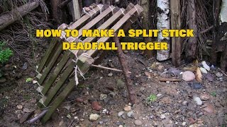 Making A Split Stick Deadfall Trigger