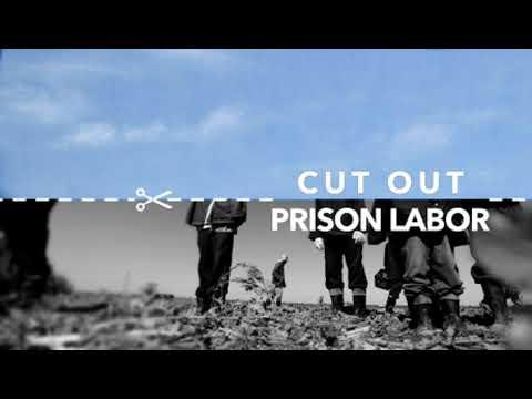 August 19th Prisoner Protest: convo w Ben Turk of IWOC