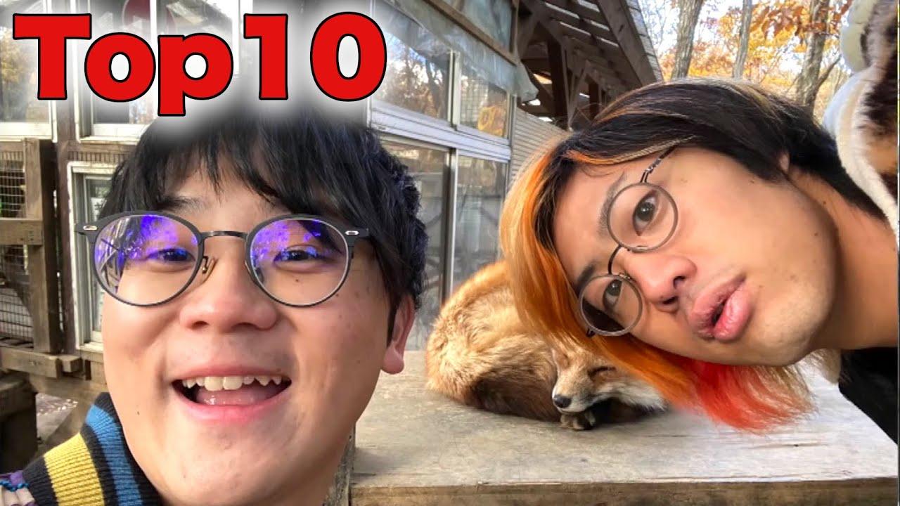 動物・ペット 面白名シーンランキングTop10【東海オンエア】