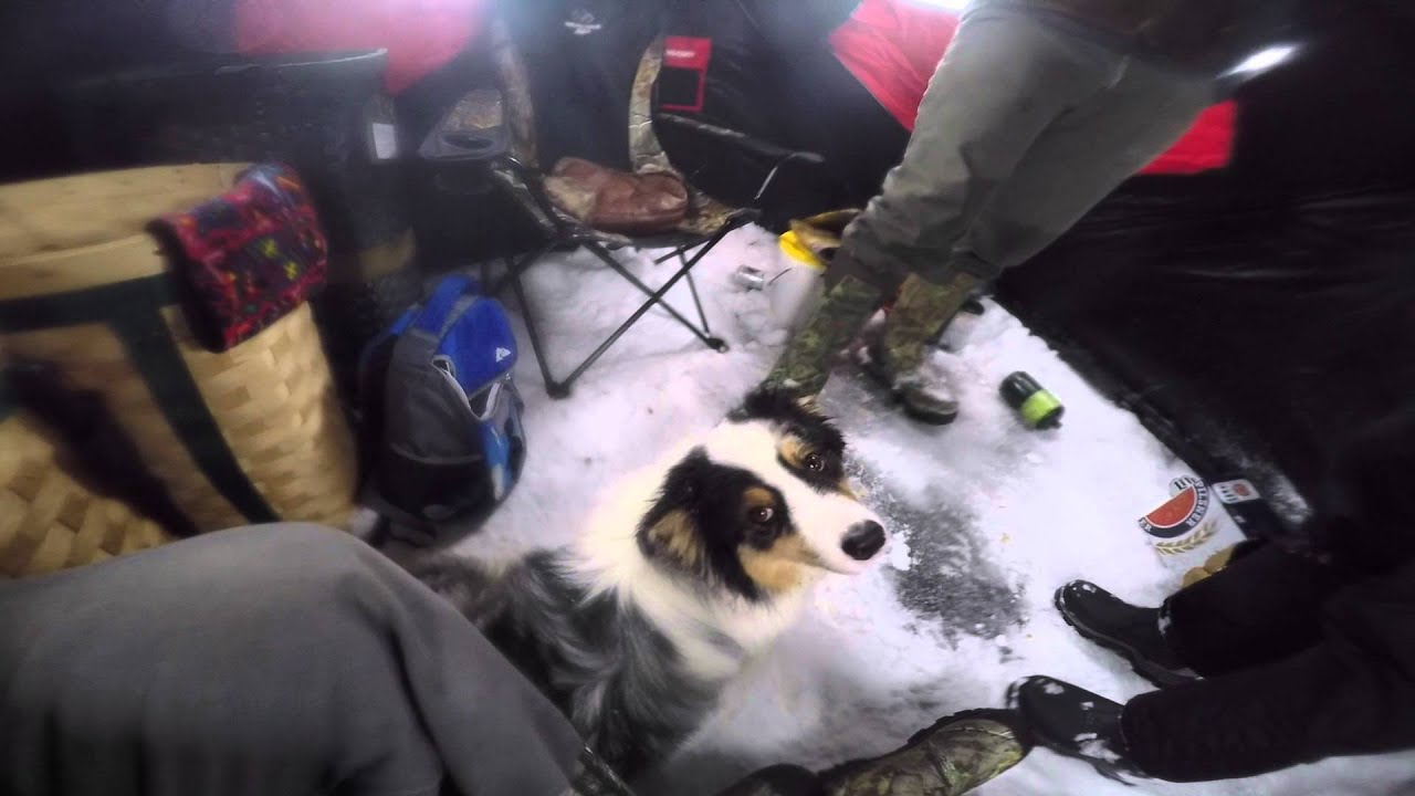 Ice fishing maine 2016 youtube for Maine out of state fishing license