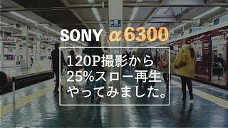 fe 35mm 1.4