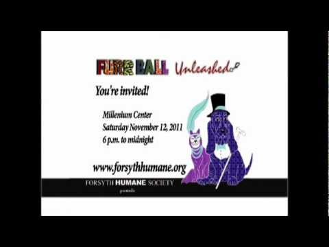 Furr Ball Unleashed! Rosemary Harris