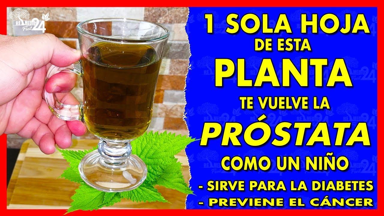 Remedi para la prostata