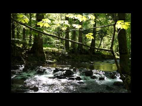 Richard Strauss Complete Piano Solo Works Tibor Szasz Op  3, 9, 5