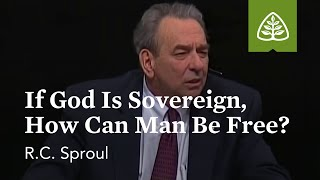 R.C. Sproul: If God is Sovereign, How Can Man Be Free?