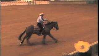 ONE RIGHT REVOLUTION AND PETER DEFREITAS AT THE 2015 VRHA MEMORIAL DAY CLASSIC OPEN DERBY