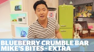 Blueberry Crumble Bar - Mike's Bites Extra