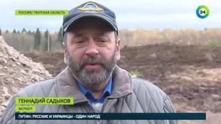 Территория абсурда  вместо чиновников на контакт с фермером пошли лоси