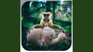 Mushroom Alignment (Bootleg Ben Magic Mushroom Mix)