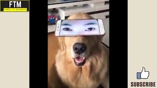 Funny videos 2018 - try to not laugh challenge #31 - all of vines - comp fails