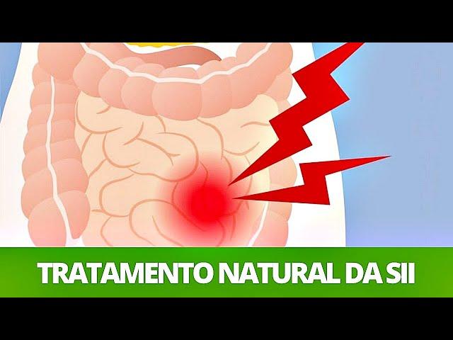 Síndrome do Intestino Irritável - Melhores alimentos e suplementos