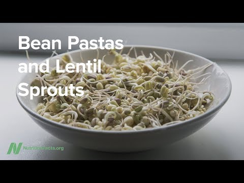 Bean Pastas and Lentil Sprouts