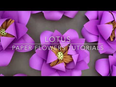 Lotus Paper flower tutorial,paper flower,Paper flower backdrop,DIY Wall décor,mini lotus flower