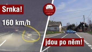 Srna ve 160 km/h, Policie v akci, Palírníková opět za volantem / Liberecká palírna #47 thumbnail