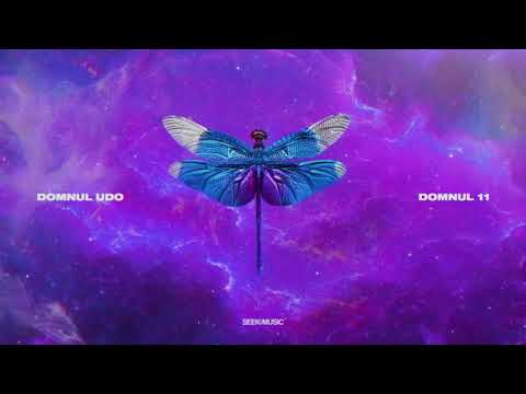 NOSFE - ICV (feat. Domnul Udo & Alex Airinei)