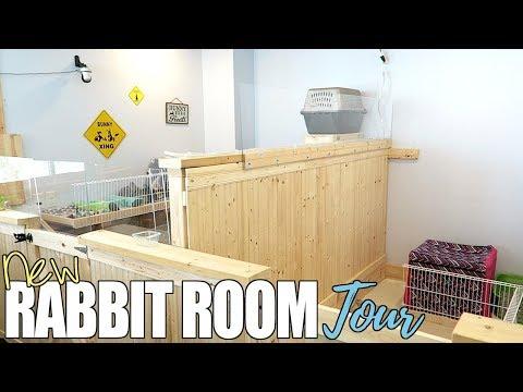New Rabbit Room Tour