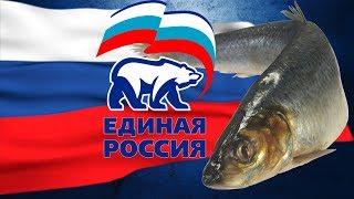 Общество И Власть Рыба Гниёт с Головы Дальше Будет Хуже