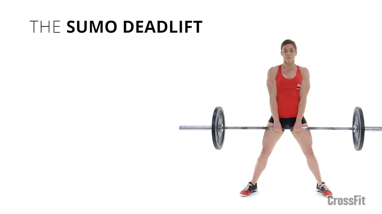 The sumo deadlift youtube falaconquin