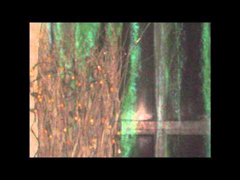 Love in Vain-The Ruts-W/lyrics
