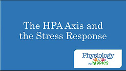 hqdefault - Hypothalamic Pituitary Axis Depression
