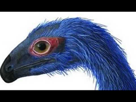 Limusaurus Tribute