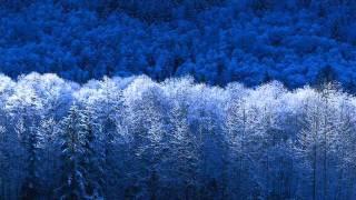Headhunterz ft Karen Danzig - I Got A Feeling(Discorockerz Remix)