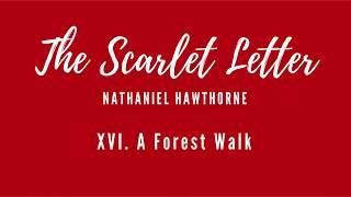 Scarlet Letter - Chapter 16