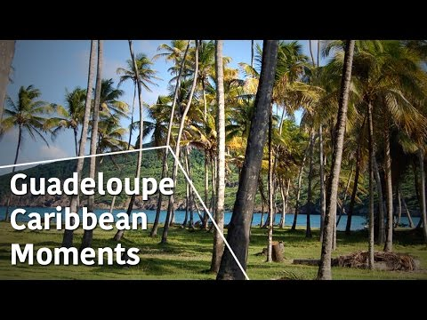 Guadeloupe - Caribbean Moments - The Secrets of Nature