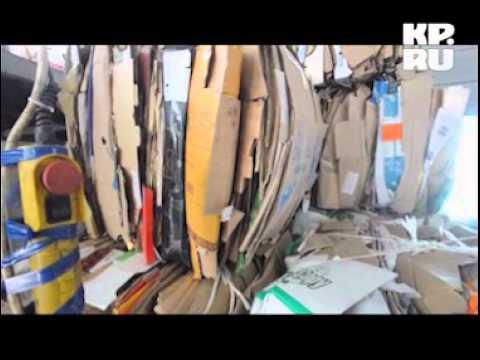 Предприниматель организовал переработку мусора