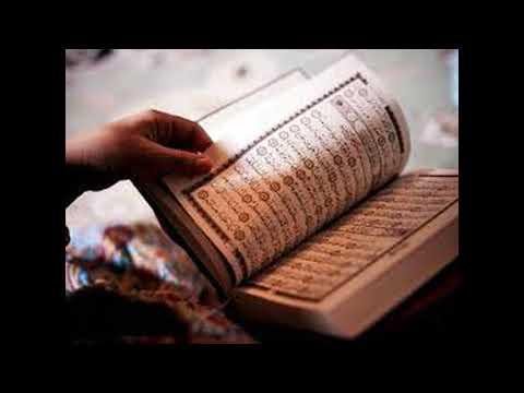 Qari Ibrahim Mir Muhammadi Tajweed Lesson 1 thumbnail
