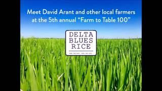 Farm to Table 100: Spotlight on Delta Blues Rice