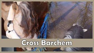Cross in Barchem gaat niet goed..|PaintedPony