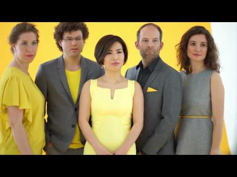"Amaryllis Quartett ""Yellow"" Trailer"