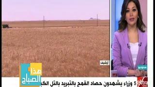 «الري»: زراعة القمح بـ«التبريد» يوفر 40 % من الماء