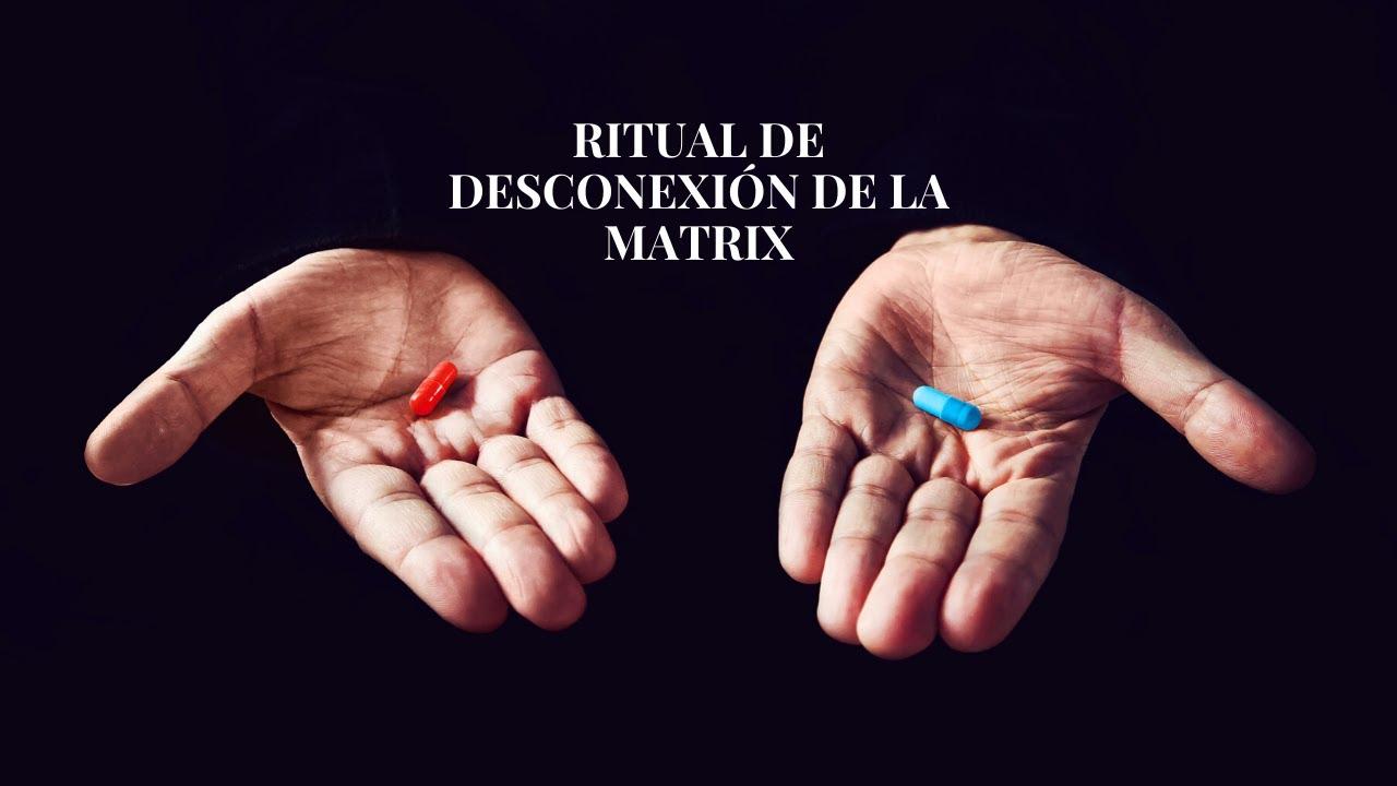 DESCONEXIÓN DE LA MATRIX (Vídeo y podcast) | TRIBU MAMÁLUNA