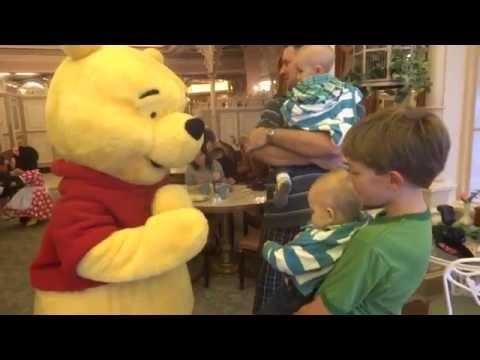 Twin baby boys meet Winnie the Pooh at Disneyland character breakfast