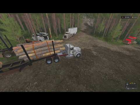 Farming Simulator 2017 | Logging | Clean up