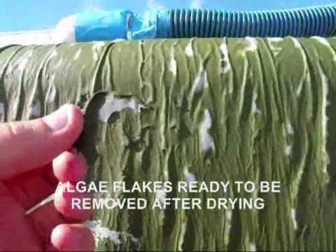 Phyco Algae Harvester / Dryer
