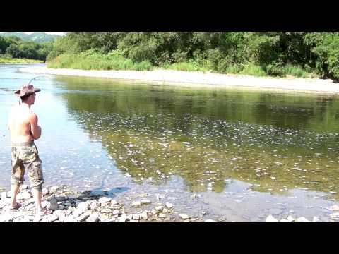 рыбалка горбуши на сахалине
