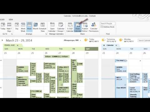 Outlook Delegates - Office 2013 Series I