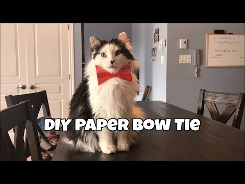 How to make a DIY Paper Bow Tie