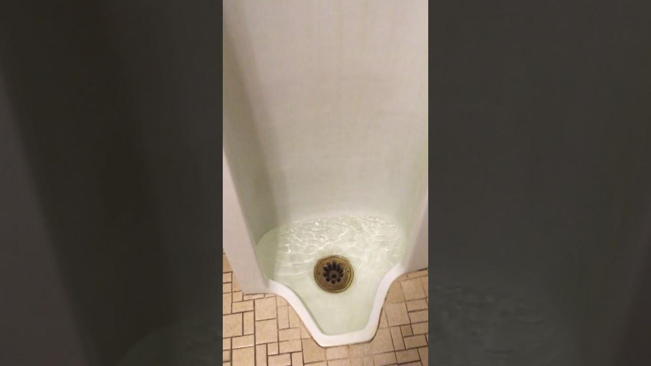 Elementary school bathroom urinal - School Bathroom Pt3 With Clogged Urinal