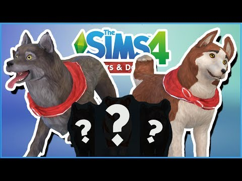 Balto & Jenna's Puppies?! 🐱🐶 Sims 4: Cats & Dogs