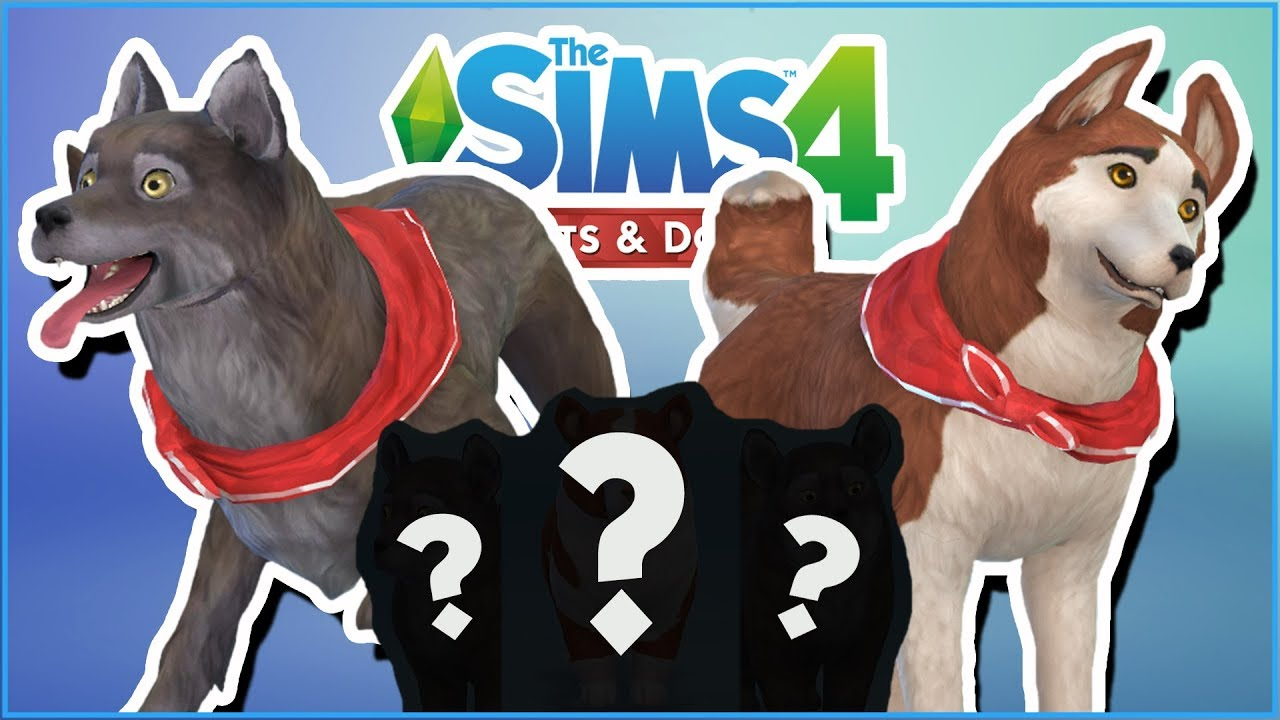 Sims  Legacy Cats And Dogs