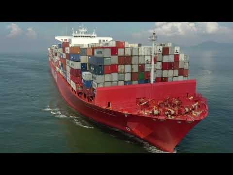 """Download Container Ship """"Cap San Antonio"""" - 20/02/2021"""